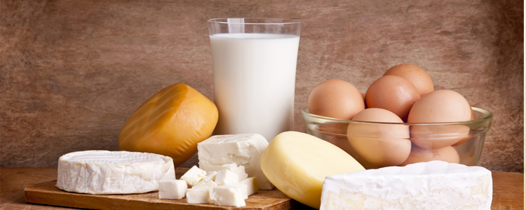dairy_travel_protein