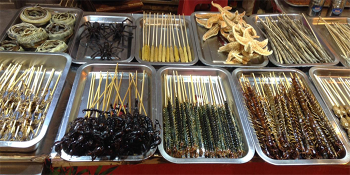 unusual_food_China